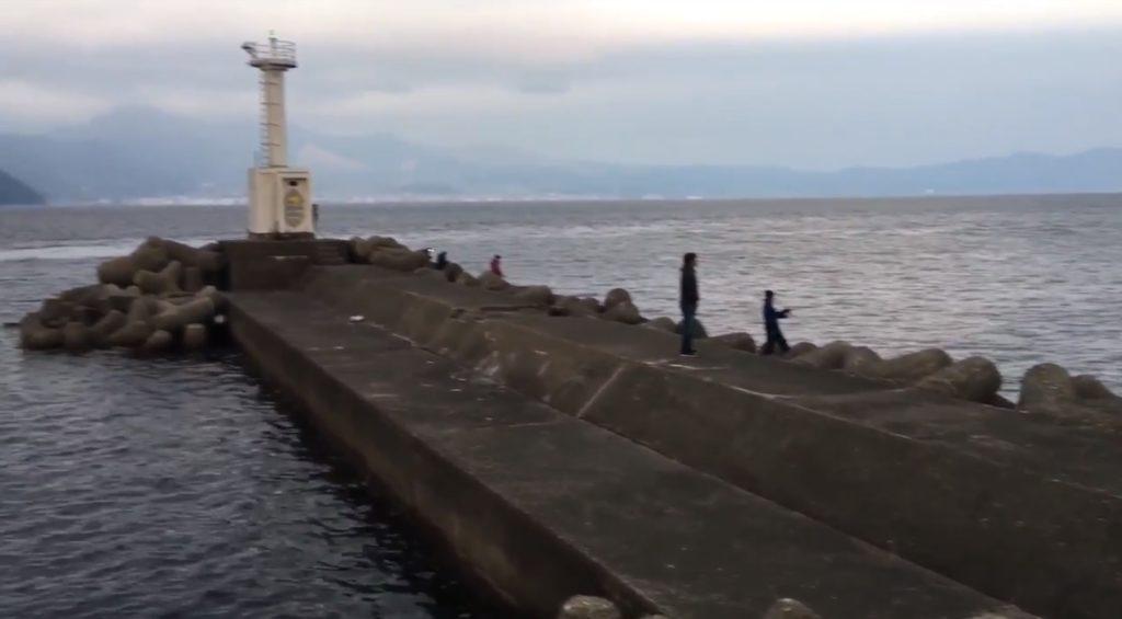 大分 釣りスポット 大分港 5号地 白灯台 防波堤 ブリ エギング メバリング シーバス ショアジギング チヌ