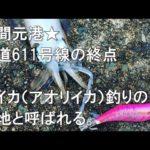 動画:大分の釣りスポット情報 モイカの聖地 津久見 四浦半島北部の漁港 エギング 泳がせ釣り フカセ釣り 釣りガールにも人気