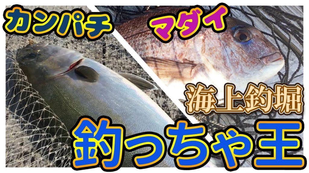 動画:海上釣堀 釣っちゃ王 釣れた魚とその後のサービス編 マダイ ヒラメ シマアジ 石鯛 ブリ カンパチ ヒラマサ マハタ 釣りガールも安心の釣り堀