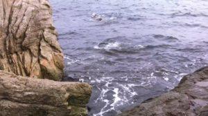 ハイリスクハイリターン!佐伯の地磯 大型の高級魚も釣れる 四浦半島 大バエ 松バエ 大分の釣り場 大浜海水浴場南側