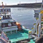 別府国際観光港の人気釣り場一文字と瀬渡し船 勇漁丸