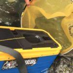 【解禁】大漁! 鮎の友釣 シマノ(SHIMANO) オトリ缶 OC-012K ブルー