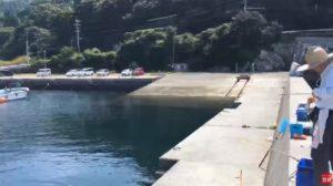 釣り場ライブ配信 夜はエギング 昼は家族で賑わう 福良港 アオリイカ アジ チヌ グレ