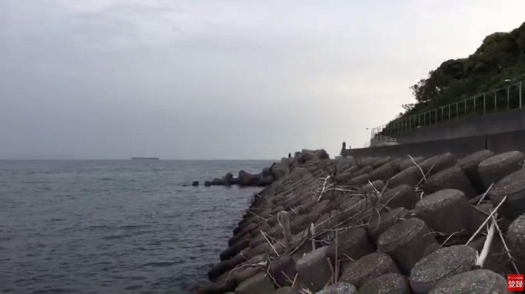 シーバスが釣れる大野川河口