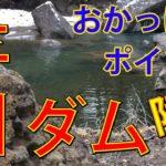 動画:大分の釣り場 ランカーバスを求めてプロも訪れる 芹川ダム 陸っぱり(おかっぱり)ポイント 釣りガールも釣りしやすいダム